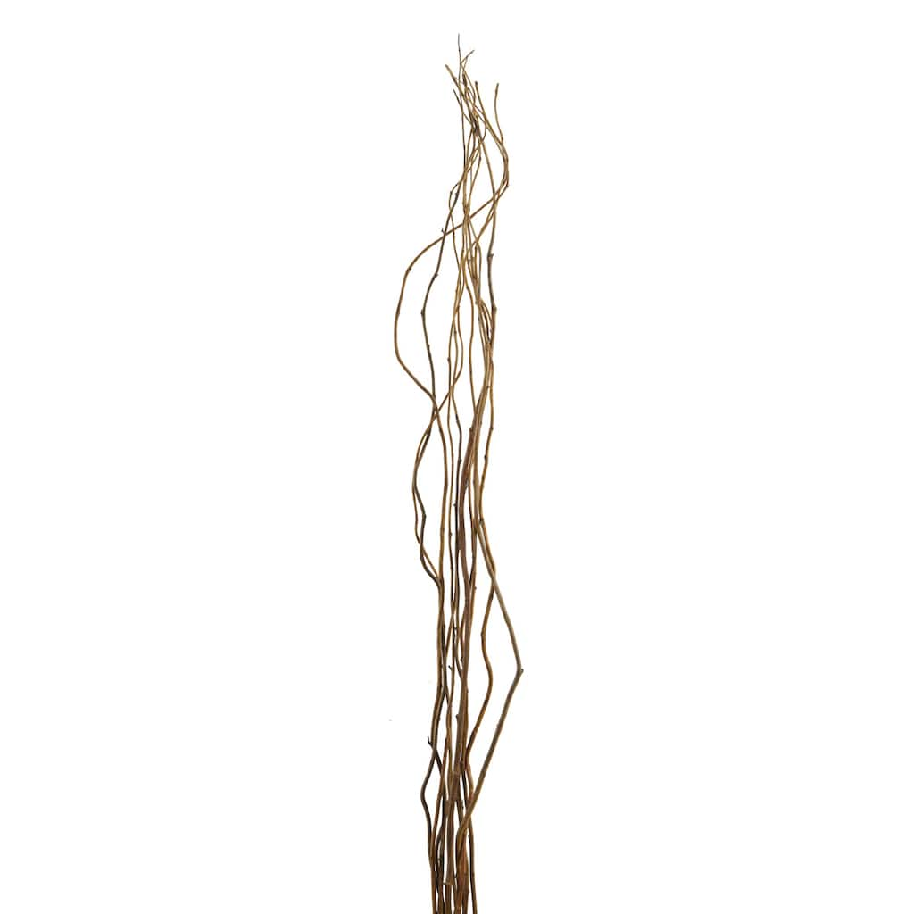 Ashland® Natural Curly Willow