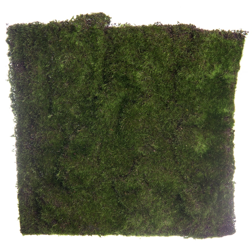 Shop For The Large Square Moss Mat By Ashland® At Michaels