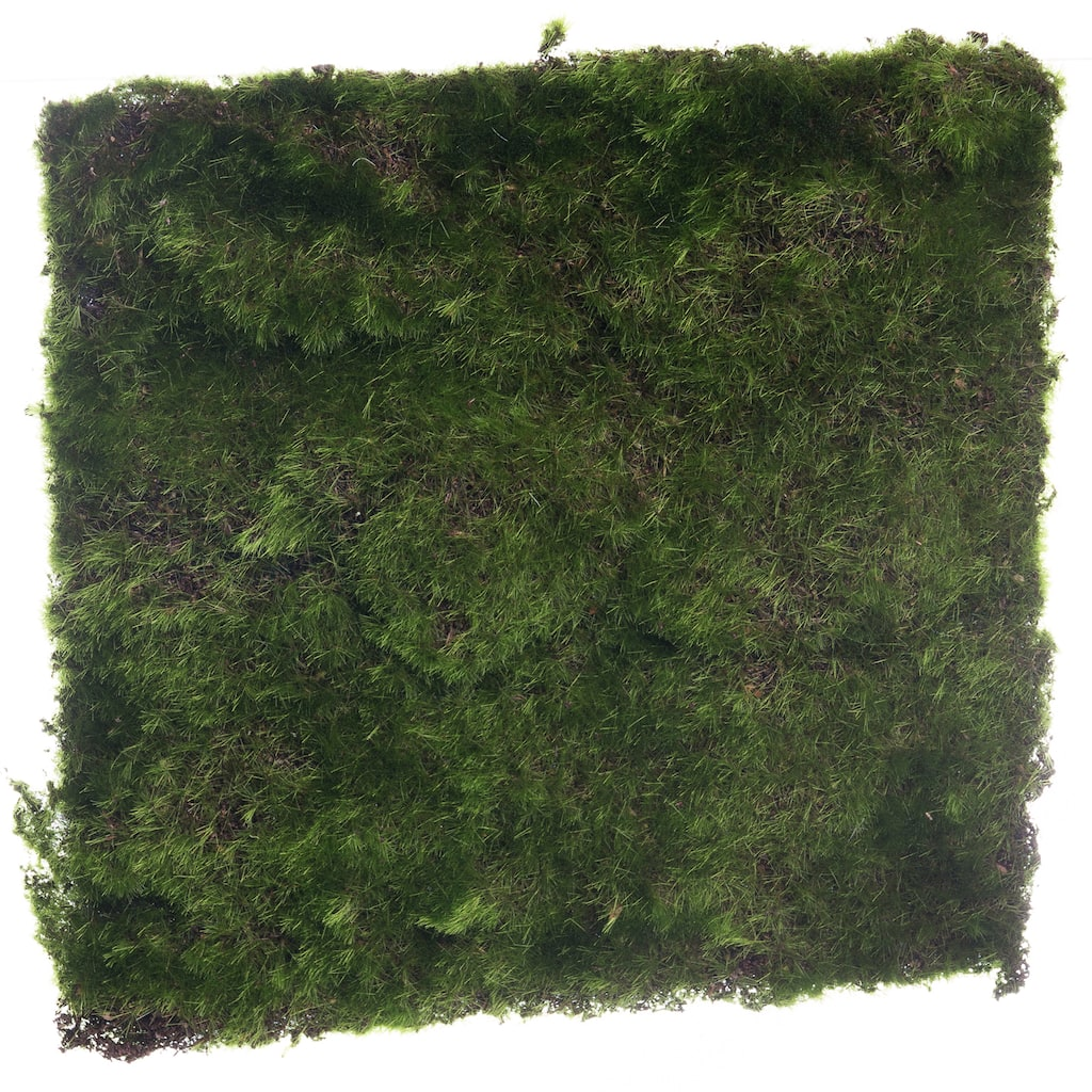 Find The Small Square Moss Mat By Ashland® At Michaels