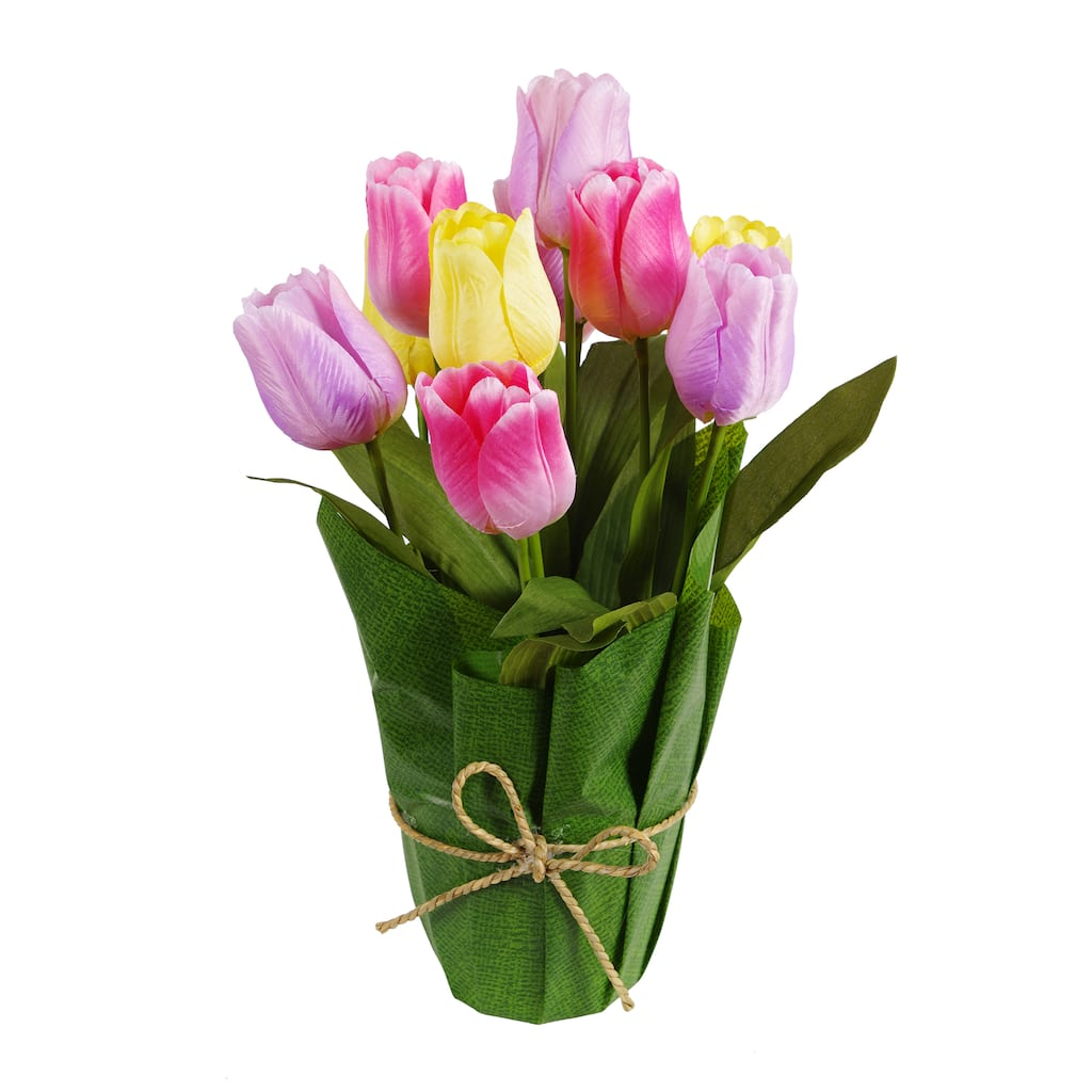 Find The Yellow, Pink And Purple Potted Tulip By Ashland