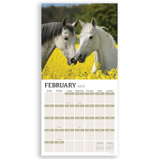 Horse Calendar 2022.Tf Publishing 2022 Horses Wall Calendar Michaels
