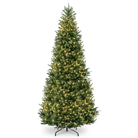 Fraser Fir Christmas Trees.12ft Pre Lit Natural Fraser Fir Artificial Christmas Tree Clear Lights