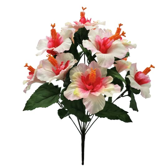 Buy The Cream Pink Hibiscus Bush By Ashland At Michaels