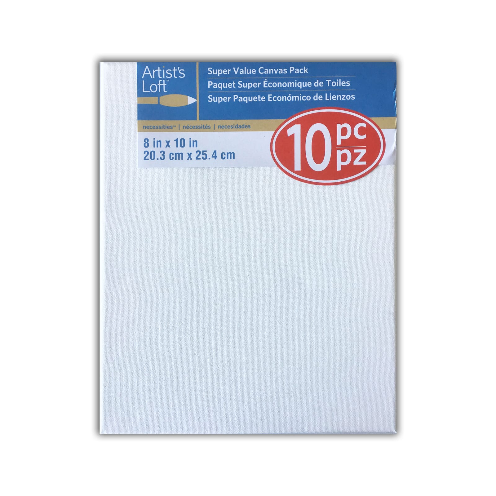 Hobbyworld Professional 8 x 10 Panel Canvas 10 Package
