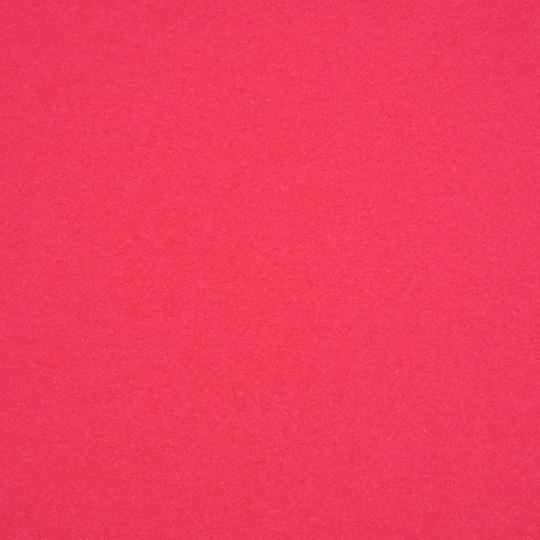 100Lb Cover // 270g//m/² 12 x 12 inch // 30,5/cm/x/30,5/cm Papier cartonn/é vert foug/ère 25 Feuilles