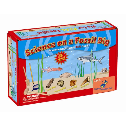Science on a Fossil Dig