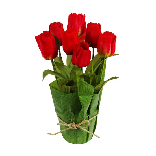 Find The Red Potted Tulip By Ashland® At Michaels