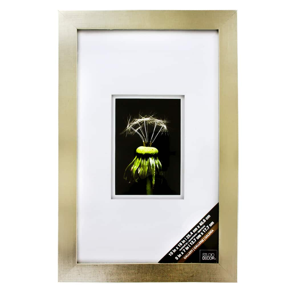 Champagne Gallery Wall Frame with Double Mat by Studio Décor®