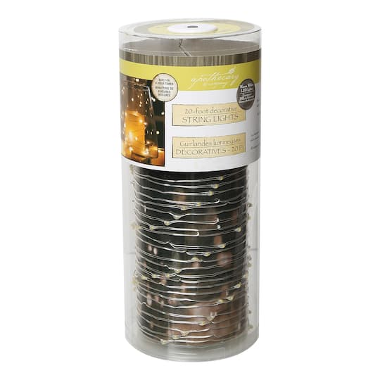 Apothecary & Company™ Silver Decorative Micro LED String Lights, 20 ft.