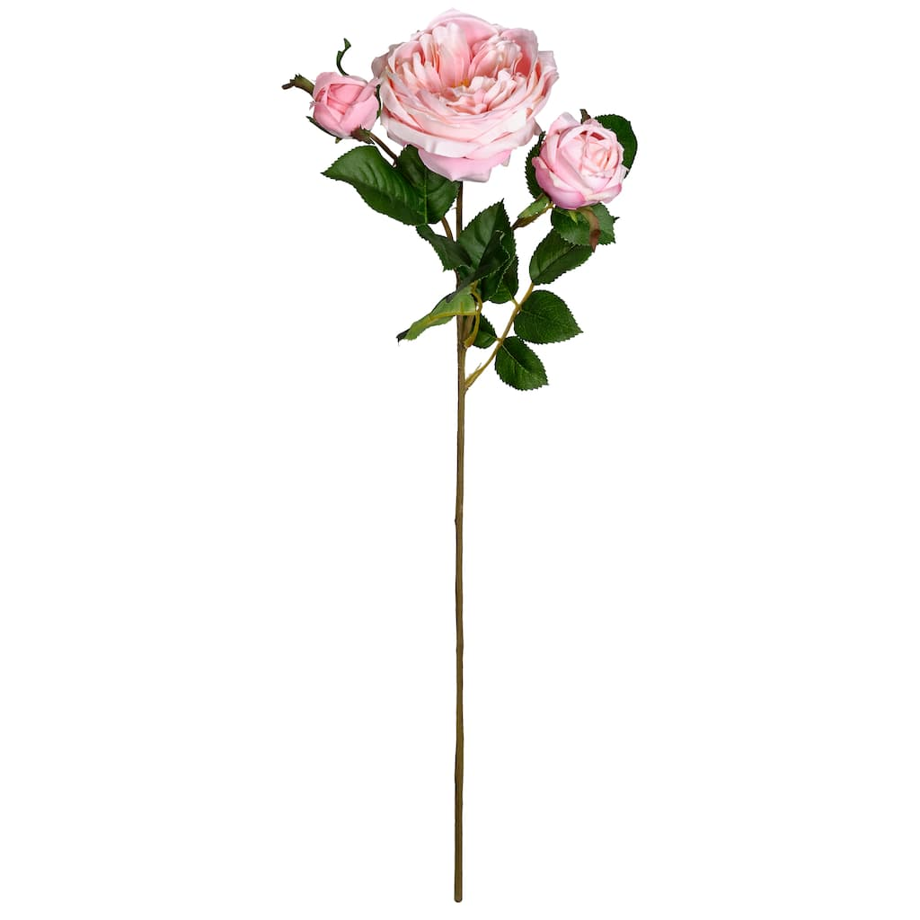 Shop For The Light Pink English Rose Stem By Ashland At Michaels