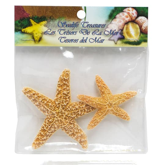 Sugar Starfish 2 Pack