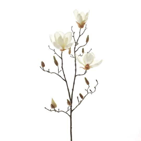 White Magnolia Branch Stem By Ashland