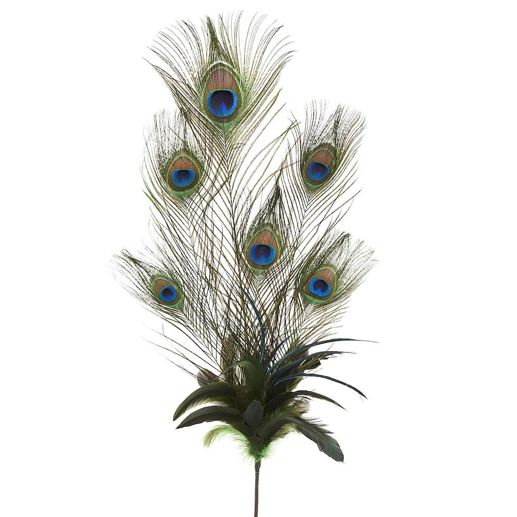 5 Peacock Feather Pet Bandana