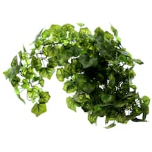 Shop 6ft. Mini Grape Ivy Chain Garland by Ashland® from Michael's on Openhaus