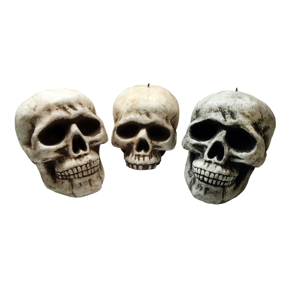 Find the Assorted Foam Skull Head By Ashland™ at Michaels